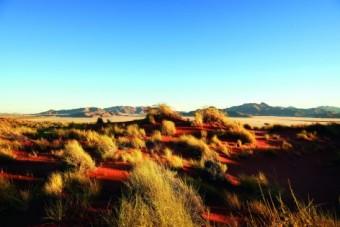 Звуковое сафари в Намибии: микрофоны MKH записывают этнические хоры и звуки пустыни